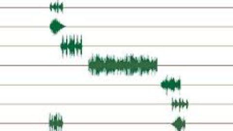 Sagora – Software para ensayos, conciertos  y grabaciones online [gratis] | #Musikawa #edmusical
